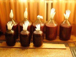 О пользе виноградного вина и виноградной косточки
