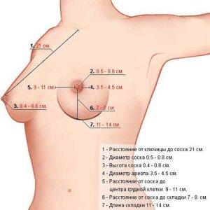Секреты  здоровой  груди