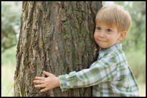 Лечение человека с помощью деревьев