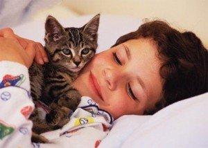 Анималотерапия , или лечение с помощью животных