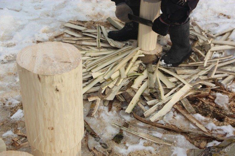 Отравление алкалоидами коры хинного дерева