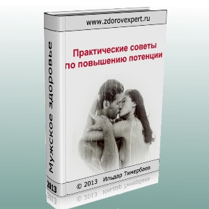 fzk_timerbaev02_300x300
