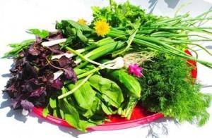 салат для лютеина